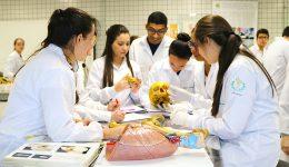 A importância de aulas em laboratório na faculdade